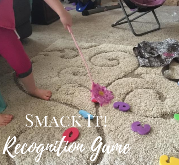 Smack It! Recognition Game